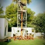 Recorte de palmeras andamios Ibiza